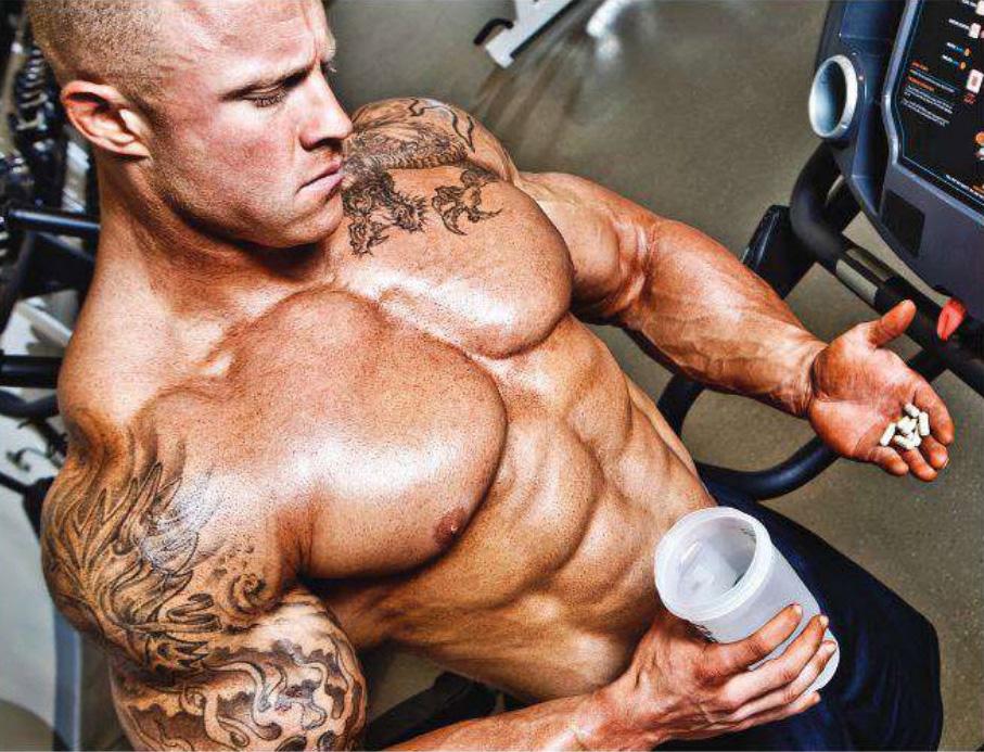 Роль стероидов в организме и росте мышц
