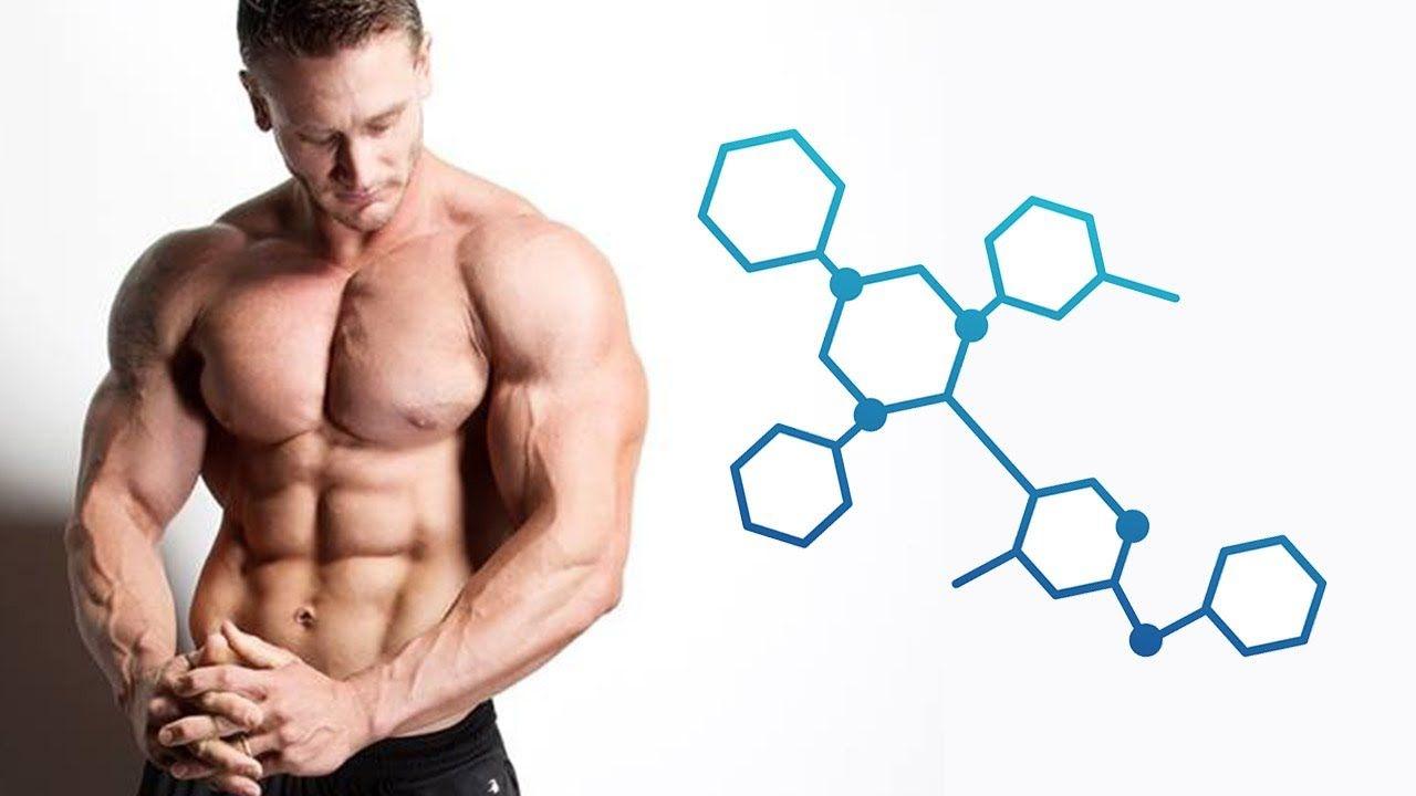 Гормоны роста и стероидные циклы